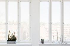 fönster utsikt vitt kruka ljus