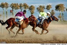 Horse Racing in Gonbad-e Qābus, Iran.  Down the Stretch They Come. Photos by Mohammad Javad Maktabi