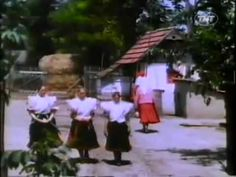 Rural life VIDEO from Hungary (1939)....can't get over the very non Hungarian la la la at the end....! Hungarian Dance, Life Video, Budapest Hungary, Tourism, Dolores Park, The Past, Culture, Folk Costume, Turkey