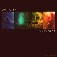 1049 Best Owl City images in 2019 | Owl city, Adam young, Owl