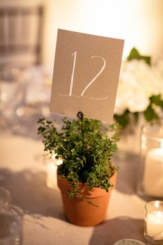potted plant table numbers | Photography by andreahubbell.com, Florals by http://www.patsfloraldesigns.com  Read more - http://www.stylemepretty.com/2013/08/22/pippin-hill-farm-wedding-from-andrea-hubbell-photography/