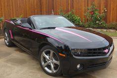 pink camaro | hot pink javelin stripes on a black camaro convertible
