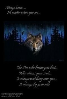 native american wolf quotes - Google Search