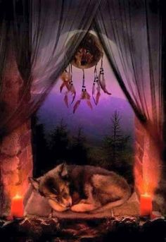 Wolf And Amerindians - Comunidade - Google+