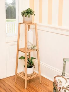 Beautiful and strong, our indoor plant stand is crafted from eco-friendly bamboo. You'll have space even your tallest plants, with nearly between shelves. Each shelf handles 44 pounds of potted plants. Tiered Plant Stand Indoor, Diy Plant Stand, Tiered Stand, Bamboo Plants, Tall Plants, Indoor Plants, Indoor Gardening, Garden Plants, A Frame Chicken Coop