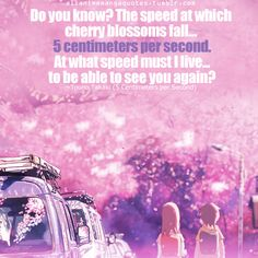5 Centimeters per second. The rate at which the cherry blossoms fall.