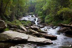 Hiking trails at Panther Creek Falls - Atlanta Trails