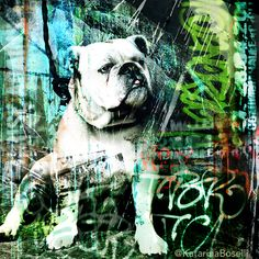 george - 100x100cm © 1/5 Collages, Art Plastique, My Works, Images, Photos, Dogs, Artwork, Movies, Movie Posters