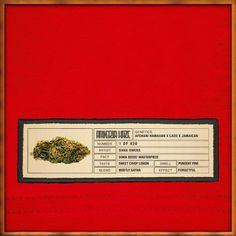 Amnesia Haze Original Bud Label