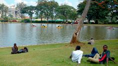 relaxing and calm Uhuru Park Nairobi City, Capital City, Kenya, Dolores Park, Relax, Calm, Country, Travel, Beautiful