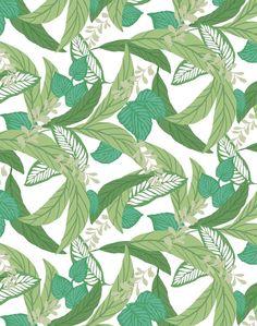 calypso leaf wallpaper