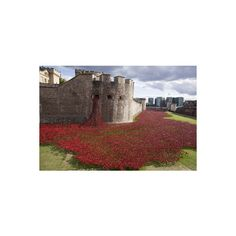 Uk, England, London. Blood Swept Lands and Seas of Red Photographic... ($22) ❤ liked on Polyvore featuring home, home decor, wall art, ocean wall art, red home accessories, mounted wall art and ocean home decor