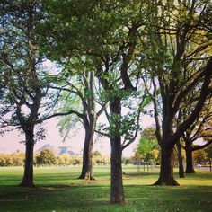 Beautiful day in #Edinburgh today #citylife #lunchbreak #autumn #fall #nature #naturelovers #parklife #arthurseat by abbyoconnor18