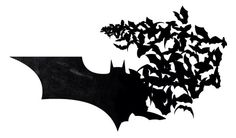 Bat(s)