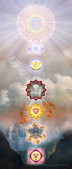 The Chakras made with real lotus petals and a background of their elements