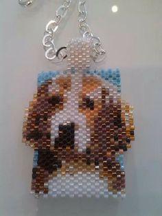 Un beagle a spasso.....