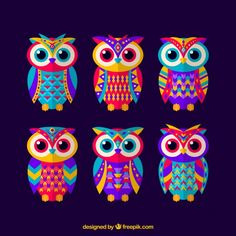 Set of ethnic colored owls Free Vector Line Art Projects, Owl Artwork, Owl Vector, Owl Photos, Peacock Wall Art, India Art, Art Drawings For Kids, Cute Owl, Rock Crafts