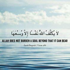 Allah does not burden a soul beyond that it can bear.