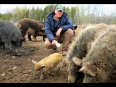 Activist Post: Farmer Threatened With Ruby Ridge Like Raid