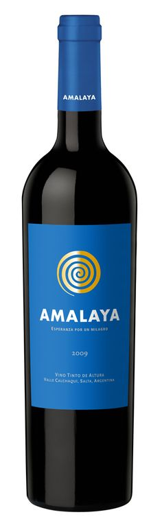 2008 Amalaya (blend of Malbec, Cabernet, Syrah and Tannat. Good stuff (though you may want to find more recent vintages)