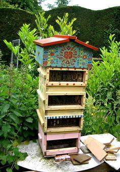 Warre hive with plexiglass viewing windows