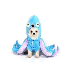 HIGH QUALITY: This pet costume is made of soft velet and polar fleece lining. The head of the octopus is stuffed with high quality cotton. Skin-friendly, make the dog feel comfortable and warm all the day. Grease Halloween Costumes, Toy Story Halloween Costume, Snow White Halloween Costume, Pet Costumes, Halloween Cosplay, Halloween Fun, Dog Spider Costume, Spider Dog, Tigger Halloween