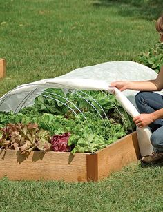 Super Hoops For Floating Garden Row Covers And Frost | Gardeners.com