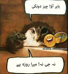 Kabhi to Nazar milao,,,, P. Funny Study Quotes, Funny Quotes In Urdu, Urdu Funny Poetry, Funny Attitude Quotes, Funny Girl Quotes, Funny Thoughts, Jokes Quotes, Funny Mom Jokes, Cute Jokes