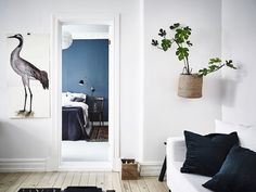 There is just so many things to love about this interior. There is the antique desk in the living room, the basket attached to the wall holding a fig tree and then there is this perfect grey-blue pain