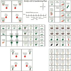 Square foot gardening plan