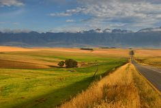 A landscape in the Overberg, South Africa. Beaches In The World, Countries Of The World, Most Beautiful Beaches, Beautiful Places, Places To Travel, Places To Visit, Provinces Of South Africa, Kwazulu Natal, Seascape Paintings