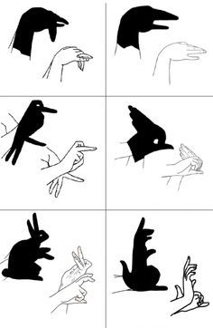 art of hand shadows - Google Search