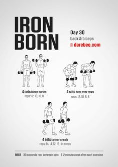 Make sure to research the best exercises to increase muscle mass .Different exercises target different results; some may work on muscle building or toning. Darbee Workout, Plyometric Workout, Workout Days, Workout Warm Up, Dumbbell Workout, Gym Workouts, At Home Workouts, Dumbbell Exercises, Monthly Workouts
