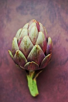 food art photography green and purple | vegetable: artichoke . Gemüse: Artischocke . légume: artichaud | Photo: Susan Wolfe @ flickr |