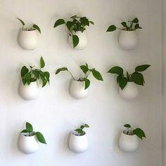 壁をおしゃれに観葉植物を飾って有効活用!壁掛けプランター・鉢・ガーデニングポットの使い方003