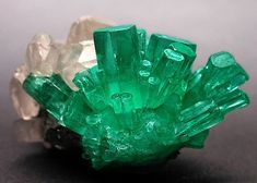Emerald crystals group of medium bluish-green, emerging from calcite crystals. Source: Boyacá Department, Colombia.