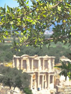 The Library of Celsus built in 125 A.D.) in Ephesus, Izmir, Turkey.  Ephesus, built in the 10th Century B.C., is known for being one of the seven churches of Asia referenced in the Book of Revelation, the potential writing place of the Gospel of John, and the site of a large gladiators' graveyard.