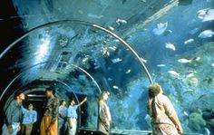 Aquarium of the Americas New Orleans Louisiana