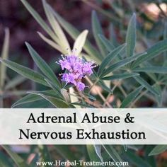 nervous exhaustion recovery