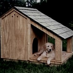 Doghouse!!! Marlee needs this :)