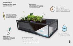 Horta inteligente que só precisa ser regada a cada 15 dias e permite produzir alimentos em qualquer lugar!