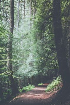 Earth, travel, the world, beauty, explore