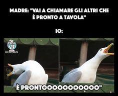 Idem Ah ah ah divertentissimo Wtf Funny, Funny Facts, Funny Jokes, Funny Video Memes, Videos Funny, Funny Images, Funny Photos, Foto Top, Italian Memes