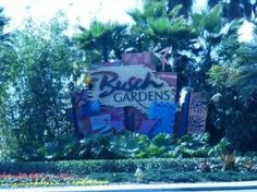 Bush Gardens, Tampa, Fl. Been here as well