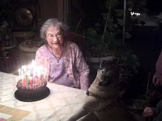 this pug carries a tune like my Lovey... birthday wishes to granny! Marleys reaction to this video was funny