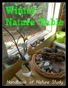 Handbook of Nature Study: Outdoor Hour Challenge - Winter Nature Table. Simple ideas to get your started and a free printable with four ideas.