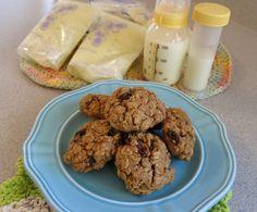 Cinnamon Apple Lactation Cookies
