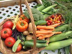 Connaissez-vous Pousse-Pouce -Agrimom #légumes