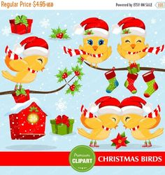 70% OFF SALE Christmas birds clipart, Christmas clipart, Bird clipart, Birds clipart, Commercial use - CA292 by PremiumClipart on Etsy