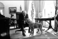 President Gerald Ford (1974-77) gives his golden retriever, Liberty, some attention in the Oval Office.
